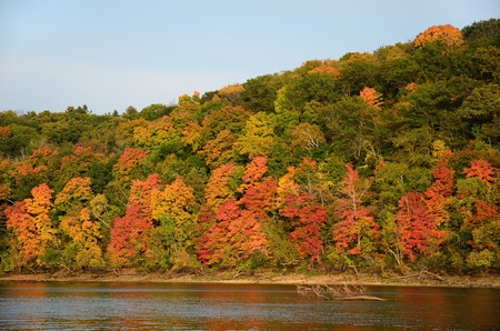 Fall Colors Along the St. Croix River near Stillwater, Minnesota Standard-Bild