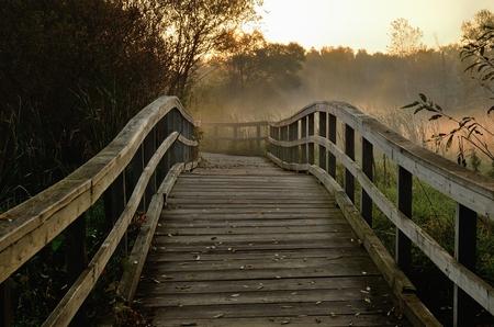 秋の早朝に木製の歩道橋
