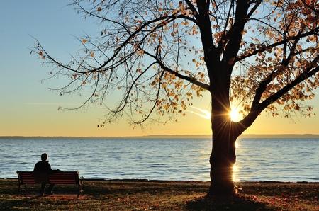 後半の湖の上の日の出を見ている男の秋の朝