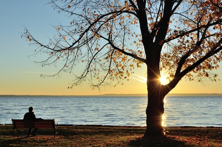 late fall: A Man Watching the Sunrise over a Lake on a Late Fall Morning