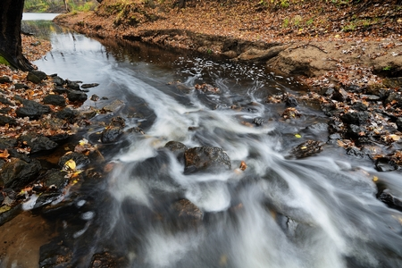 Water Flowing Down the Rapids of a Stream in Autumn