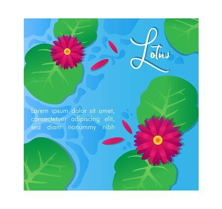 Lotus Illustration Vector Design Background Ilustração