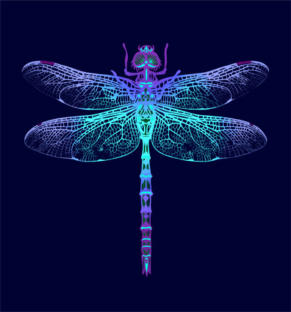 Dragonfly on Dark blue background Ilustração
