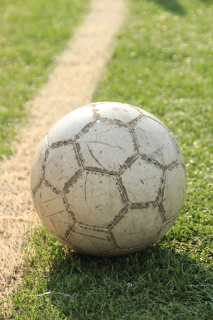 Soccer ball on the green grass  photo