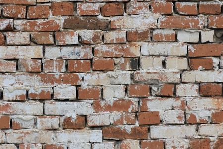 The old brick wall photo
