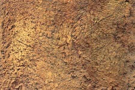 Surface with calciferous growths, background Stock Photo