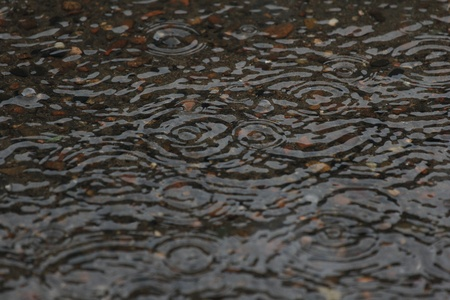 Rain on the water surface