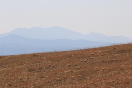 Steppe landscape, Baikal photo