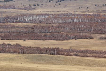 Steppe landscape, Baikal photo