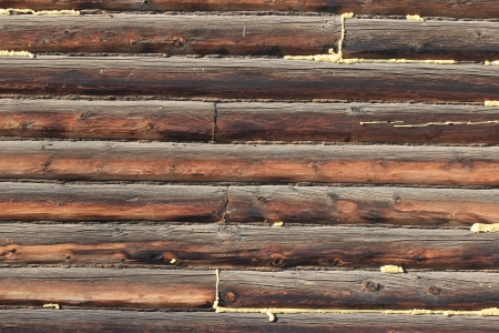 wall texture of timber photo