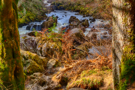 The Hermitage nature reservation in Perthshire, Scotland Stock Photo