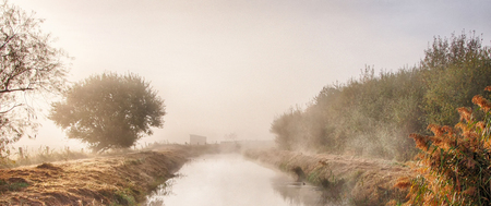 Morning fog in the Rieselfelder nature reservation near Munster in Germany Stock Photo