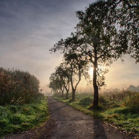 Sunrise at the Rieselfelder nature reserve near Munster Stock Photo