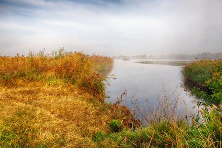 Lake and morning fog in the Rieselfelder nature reserve near Munster