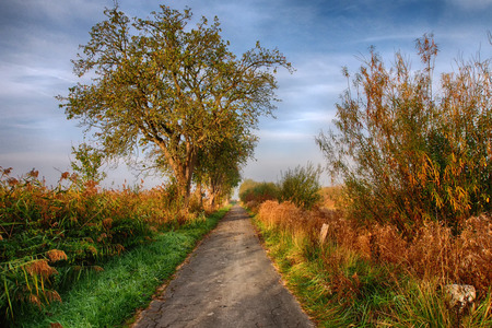 Rieselfelder nature reservation near Munster in Germany