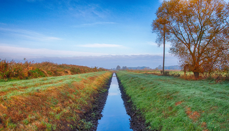 Canal in the Rieselfelder nature reserve near Munster Stock Photo