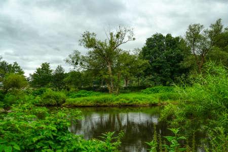 Nature along the river Sieg near Dattenfeld