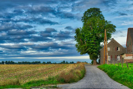 Farm with tree and grainfield in Duesseldorf Wittlaer in Germany