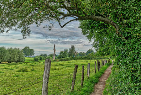 Meadows and hiking trail by the Rhine near Duesseldorf Wittlaer Stok Fotoğraf - 152294591