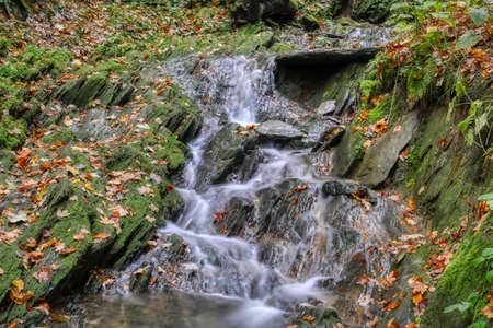 Waterfall in autumn near Winterberg in Germany Imagens