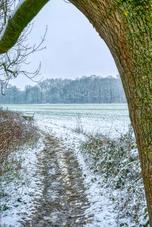 Field and hiking trail near Huelchrath in winter