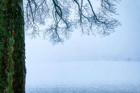Winter landscape and fog Solingen