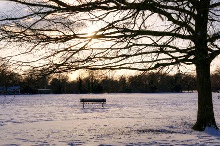 Lonely bench in a public park in Dusseldorf in winter Stok Fotoğraf
