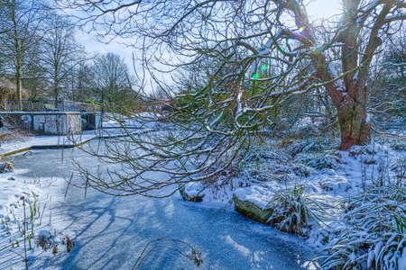 Pond landscape in a public park in Dusseldorf in winter Stok Fotoğraf
