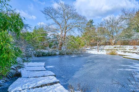 Frozen pond in a public park in Dusseldorf in winter