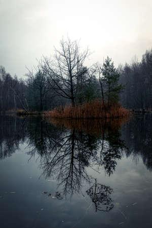 Silent lake in the heathland of Solingen Ohligs Stok Fotoğraf