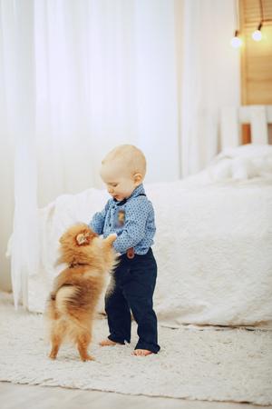 boy with dog Stock fotó