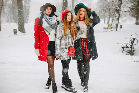 Young beautiful girls in winter park happy and joyful