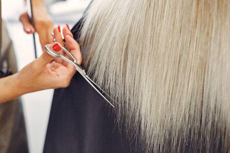Hairdresser cut hair her client. Woman in a hair salon Standard-Bild