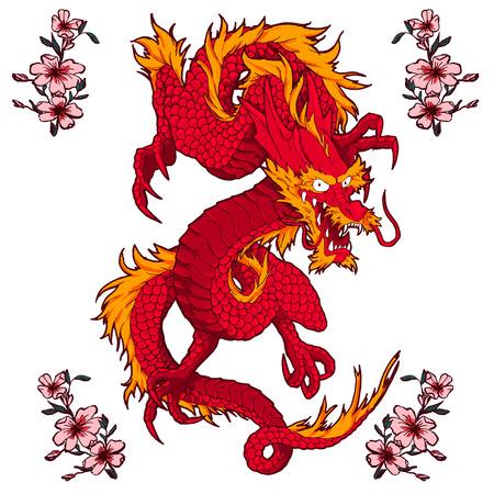 Traditie Aziatische Draak Illustratie
