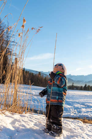 Boy with Santa red hat against a winter landscape background. Happy smiling child in the snow at Christmas standing beside tall plants outdoors. Crans Montana in Switzerland.