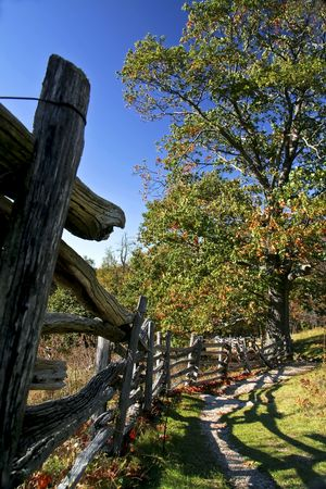 A very dimensional view down a fence line leading to an autumn tree which leaves are changing color. photo