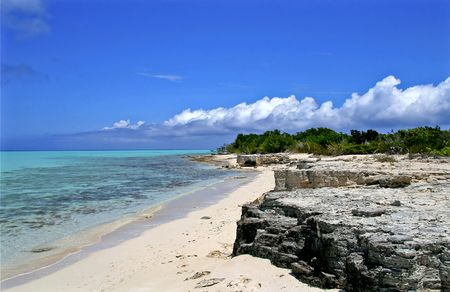 Beautiful stetch of tropical shoreline covered with limestone. photo