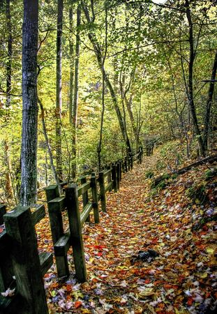 Beautiful hiking trail with wooden fence leading up to the mountain top. photo