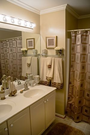 counter light: Luxurious well decorated modern bathroom with matching color scheme.