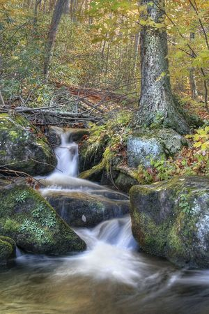 Beautiful autumn waterfall in the woods of mountains during the fall leaf change over. photo