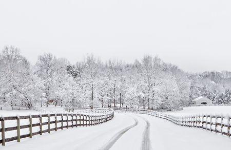 Winter snow storm scene photo