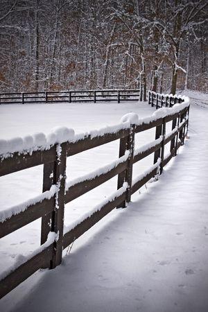 눈이 필드의 테두리 나무 울타리 라인을 덮여있다.