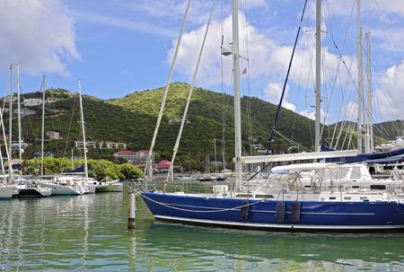 Beautiful marina lined with luxurious sailboats and lush green mountains in the background.