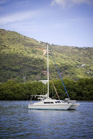 Luxury catamaran anchored just off sure a lush green mountain in the tropics. photo