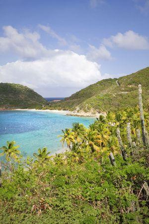Beautiful lush green shoreline of the British Virgin Islands. Stock Photo - 6027768