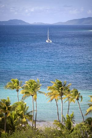 Beautiful tropical shoreline with sailboat sailing in the distance.