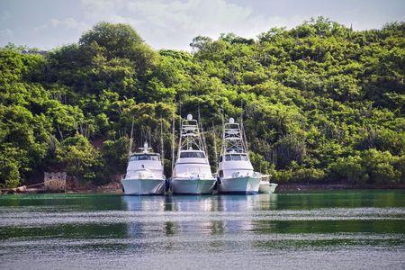 Three large luxurious fishing boats along a tropical shoreline.