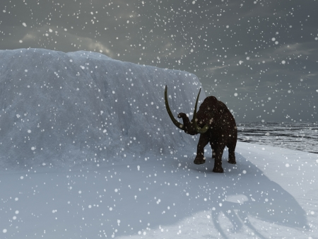 ice age: Woolly ice age mammoth in blizzard Stock Photo