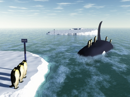 Penguins wait on iceberg for orca bus