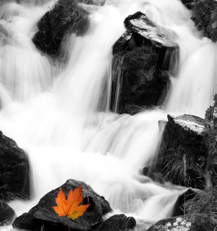 lockup: Waterfall with an autumn leaf. Shot taken on a tripod, mirror lockup and shutter release.